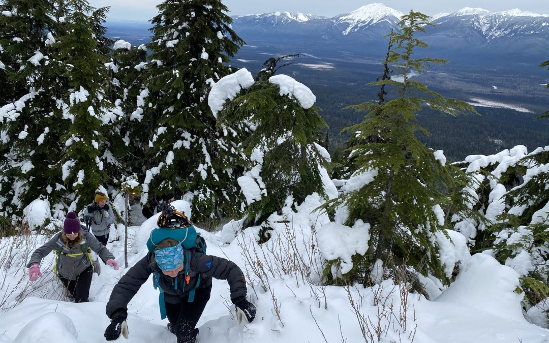 Driscoll Ridge Snowshoe – Jan 13th